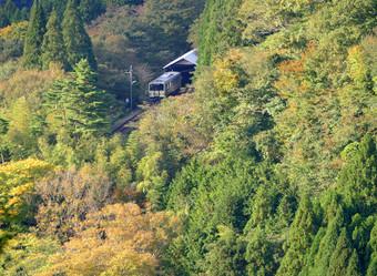 Blog_kisukisen15